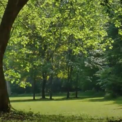 Eston Şehir Koru - Teaser Video